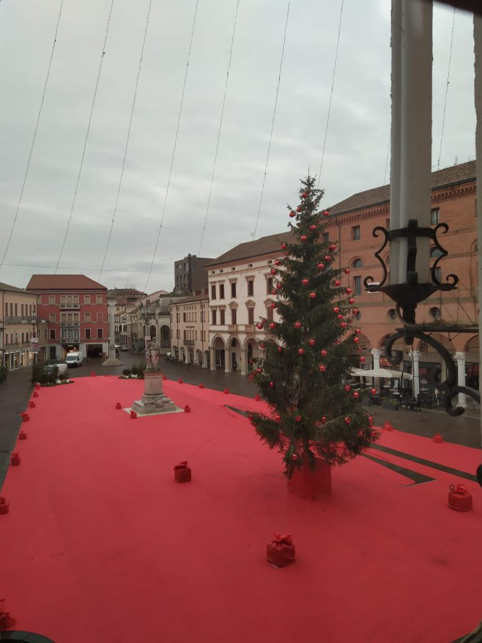albero natale a Rovigo